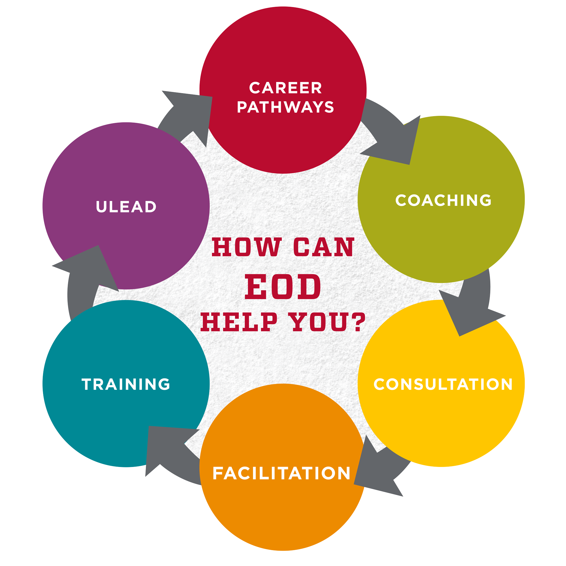 How can EOD help you? Career Pathways, Coaching, Consultation, Facilitation, Training, Ulead
