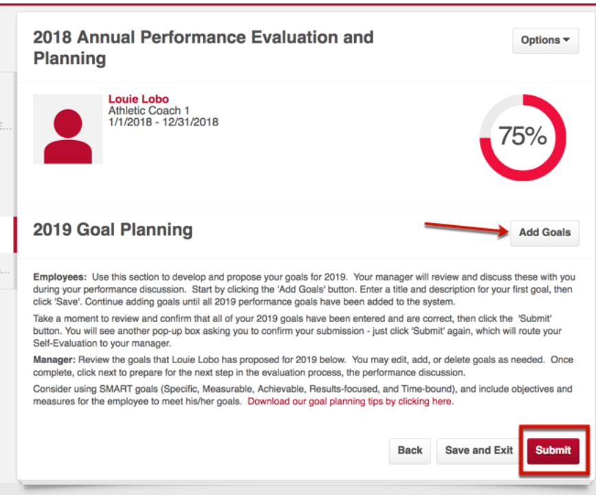 Performance Evaluation Process
